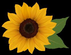Sunflower profile clipart - Clipground | Tattoo/Piercing | Pinterest ...