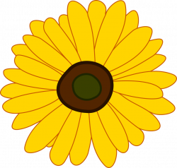 Sunflower | Free Stock Photo | Illustration of a sunflower | # 17175