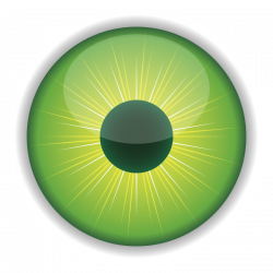 Green Eye Clipart | Human Body Our God Made Science Boards ...