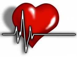 Clipart - Heart ECG Logo | Hearts ♥ L♥ve | Pinterest | Medical ...