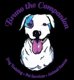 Bruno The Companion – Dog Training, Pet Services, Animal Rescue ...