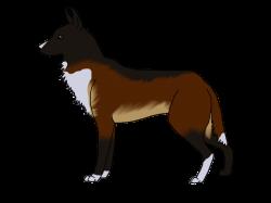 XXX} WolfRun's Caliber CDX by ForsakenWolf28 on DeviantArt