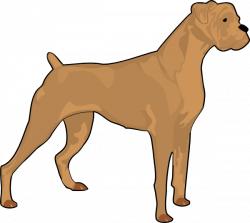 Brown Boxer Clip Art at Clker.com - vector clip art online, royalty ...