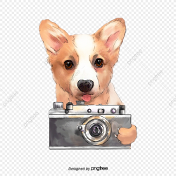 Hand Painted Animal Dog Element, Slr Camera, Hand Painted ...