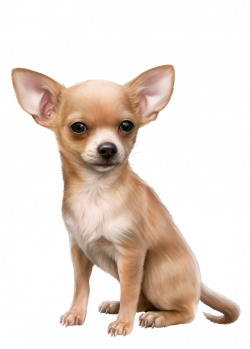 Oscar.png | Dog 3D Tubes 1 | Pinterest