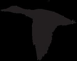 Duck Flying Silhouette PNG Clip Art Image | Clip Art | Pinterest ...