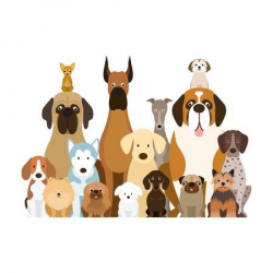 Image result for clipart group of dogs | Grooming | Group of ...
