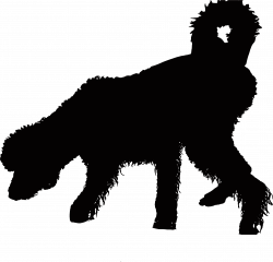 Clipart - Shaggy Wet Dog Silhouette