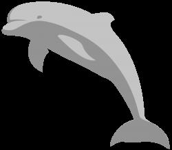 Amazing Dolphin Clipart - ClipartBlack.com