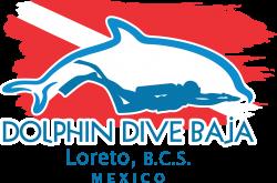 Diving Loreto Mexico   Home   Dolphin Dive Baja