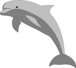Dolphin Clip Art at Clker.com - vector clip art online, royalty free ...