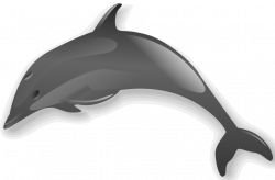 File:Dolphin 2.png - Wikimedia Commons