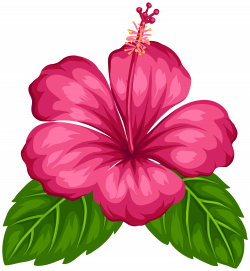 Free Moana Clipart at GetDrawings.com | Free for personal use Free ...
