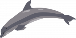Clipart - Dolphin