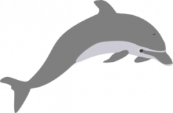 Dolphin Outline Grey Clip Art at Clker.com - vector clip art ...