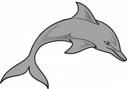 Jumping Dolphin Clip Art | Clipart Panda - Free Clipart Images