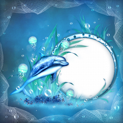 Transparent Sea Frame with Dolphin | Whales Dolphins Sharks ...