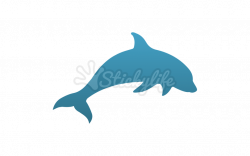 Dolphin Decal - Custom Window Stickers for Dolphin Fans