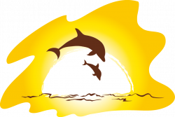 Sunset Beach Clip art - dolphin 952*639 transprent Png Free Download ...