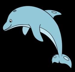 Bottlenose Dolphin Clipart | Free download best Bottlenose Dolphin ...