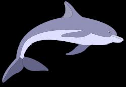 Raster clipart dolphin