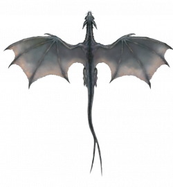 Image detail for -Gray Dragon (overhead).png | For Max | Pinterest ...