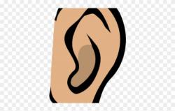 Ear Clipart Listening - Ear Clip Art - Png Download (#326667 ...