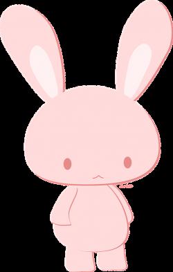 The Tale of Peter Rabbit – Jolly Good Kangaroo