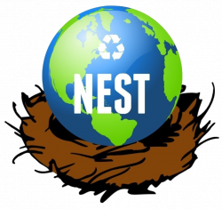 The Causes and Effects of Deforestation! - NEST