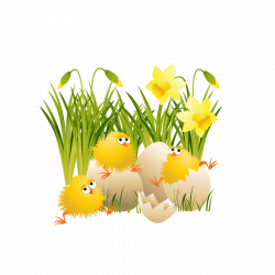 Large Easter Chicks | Gallery Yopriceville - High-Quality Images ...