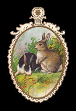 Antique Images: Vintage Easter Clip Art: 2 Easter Bunnies on Vintage ...
