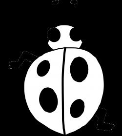 ladybug 21 black white line art flower scalable vector graphics ...