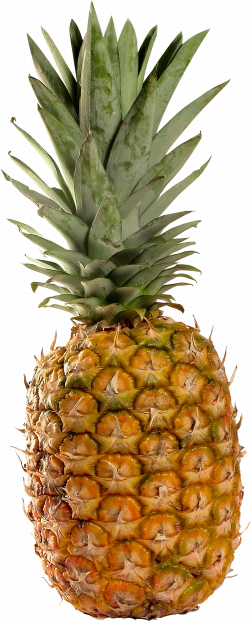 Pineapple Twenty-three | Isolated Stock Photo by noBACKS.com