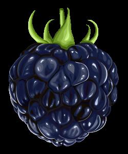 Blackberry Fruit PNG Clipart | Fruits | Pinterest | Blackberry, Clip ...