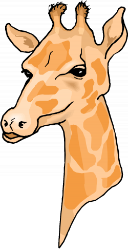 Free Cow Clipart