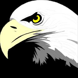 Bald Eagle Head Clip Art at Clker.com - vector clip art online ...