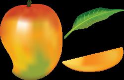 Mango Drawing at GetDrawings.com   Free for personal use Mango ...
