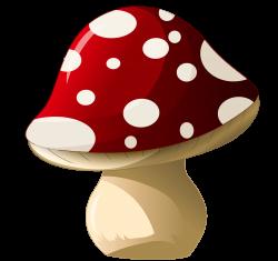 Mushroom_PNG_Clipart_Picture.png (4351×4097) | на СХОДИНИ про гриби ...