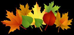 Fall Leaf Back Clipart