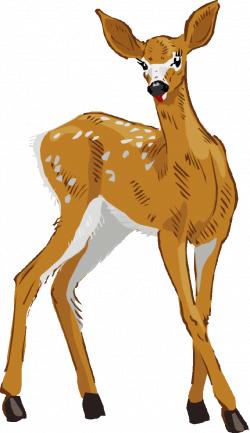 Deer Clipart Images Free | Siewalls.co