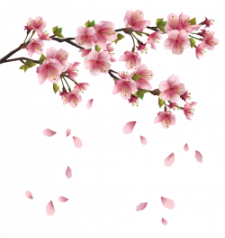 Beautiful Pink Spring Branch with Falling Petals PNG Clipart ...