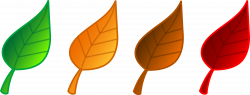 28+ Collection of Images Of Leaves Clipart | High quality, free ...
