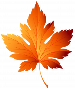 Autumn Leaf Transparent Picture Free Download | Free pictures ...