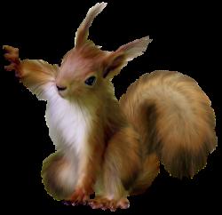 Painted Squirrel Clipart | Digi-Scraps Freebies 2 | Pinterest ...