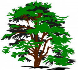 Family Tree Clipart   Clipart Panda - Free Clipart Images