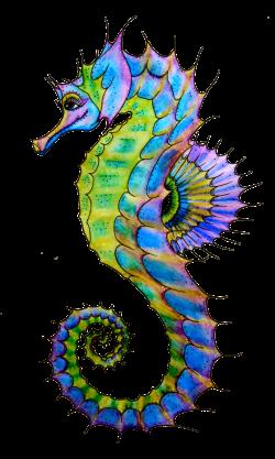 Starfish Painting | Clipart Panda - Free Clipart Images | Mermaids ...