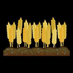 Crop Farm Agriculture Harvest Clip art - wheat 1969*1969 transprent ...