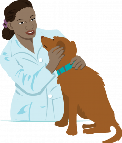 28+ Collection of Veterinarian Clipart Images | High quality, free ...