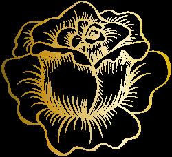 Golden Rose PNG Clip Art Image | Roses | Pinterest | Clip art