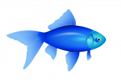 70 Colorful Fish Clipart Images - Free Clipart Graphics, Icons and ...